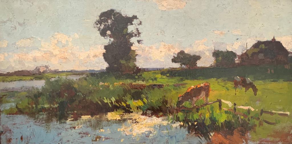 Koeien drinken bij de rivier